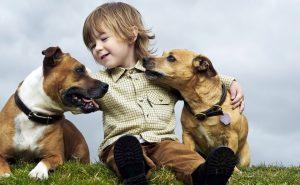 niños-y-mascotas-960x623